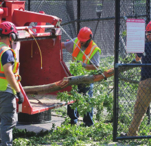 Storm Clean-Up to Continue for Weeks